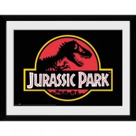 Jurassic Park Picture Logo 16 x 12