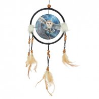 Decorative Heart of the Storm Owl Design Dreamcatcher Small