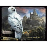 Harry Potter 3D Image Puzzle 300pc Hedwig