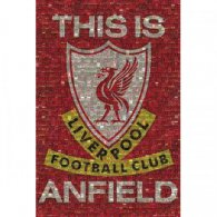Liverpool F.C. Poster Mosaic 39